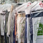 Clothes Moths: Prevention & Treatment